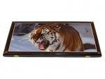 нарды Сирийские Амурский тигр большие