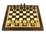 шахматы смешанные 179А